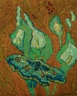 peacock moth 001